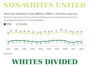 non-whites-united-vs-whites-divided